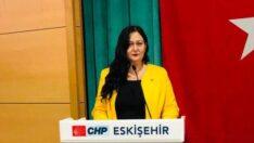 """CHP İl Başkan Yardımcısı Eryılmaz: Tüm annelerin """"Anneler Günü""""nü kutluyorum."""