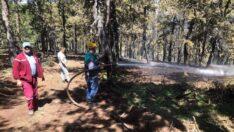 Mihalıççık'taki Orman Yangını Kontrol Altında