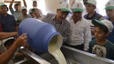 Günlük toplanan süt 6 ton…