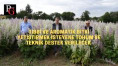Tıbbi ve Aromatik Bitkiler Köylüye Ek Gelir Olacak