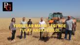 Büyükşehir'in hasat çalışmaları devam ediyor