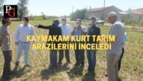 İnönü'de hasat sezonu açıldı