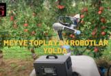 Robotlar elma bahçelerinde…