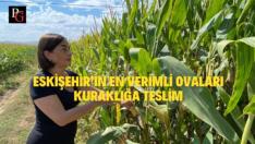 Tarımsal Üretim,İklim Krizi Gerçeğiyle Yapılmalı