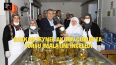 Başkan Akgün,Çubuk Ev Tipi Turşu Üretim Tesisini Gezdi