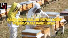 Arıköy'de Bal Hasadı Başladı