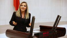 Türk-İslam aleminin ve milletimizin Mevlid Kandili'ni tebrik ediyorum